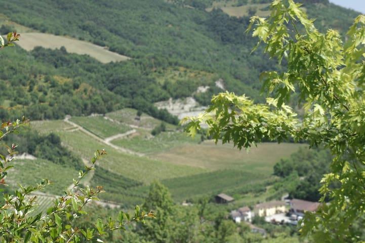 Cà Mia a Torrazza Coste - Oltrepo pavese