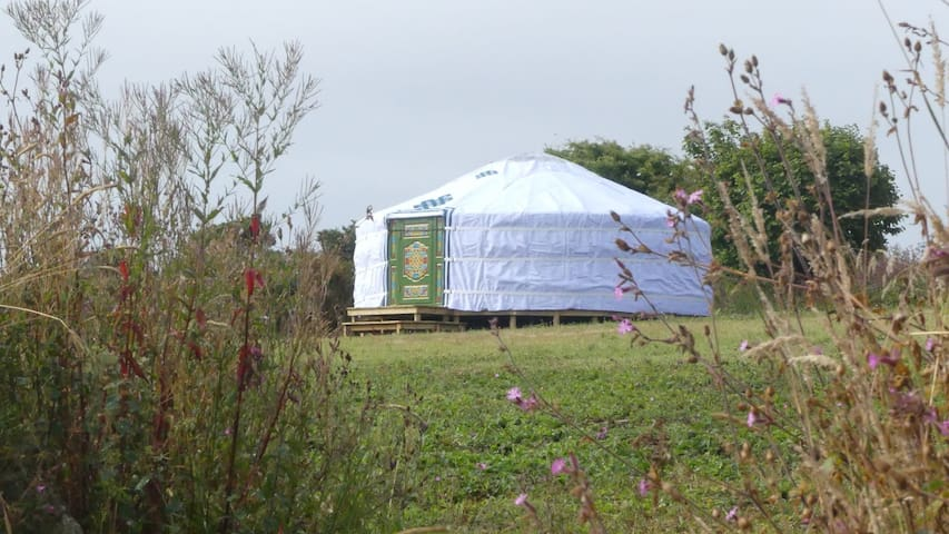 Farm Eco Glamping, 'Meadow Yurt'
