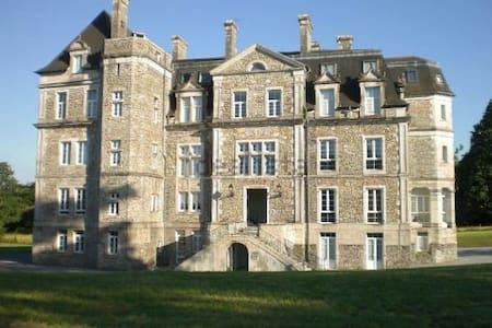 CHATEAU D' ESCOS  PRECIOSO APARTAME - Escos - Замок