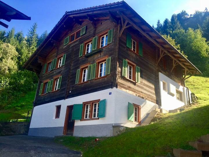 Traditional Swiss House, Modern Interior in Nature