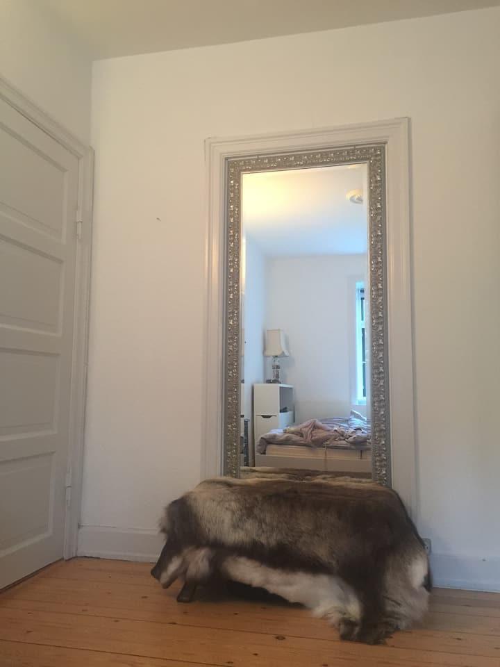 Skønt værelse i hjertet af København.