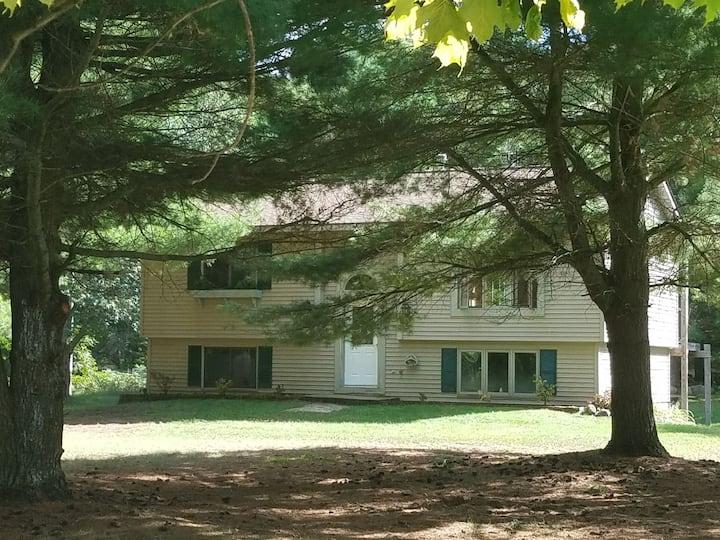 Mancelona- Northern Michigan home