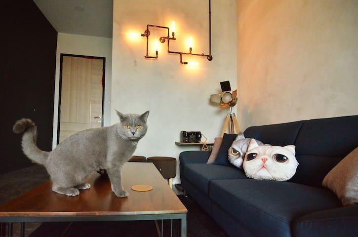 Mushi Roomstay @ JB Area near SG - Johor Bahru