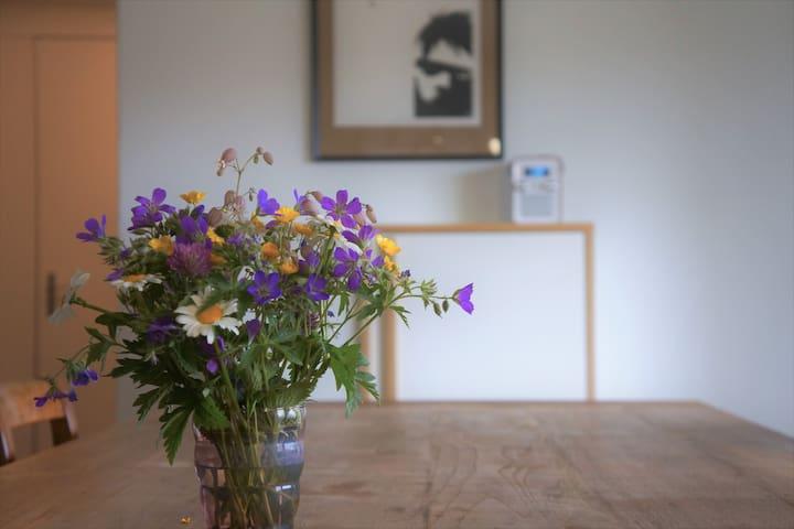 Cozy apartment in quiet area