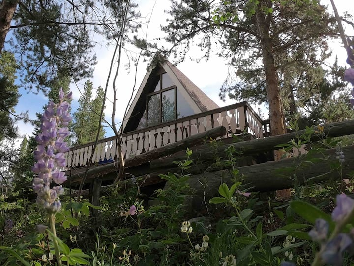 Charming A-Frame Amongst the Aspens And Pines