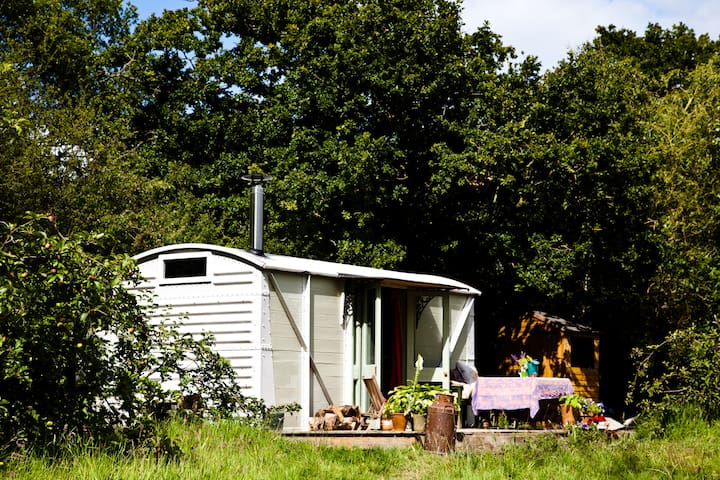 unique and fun glamping near bruton - North Brewham