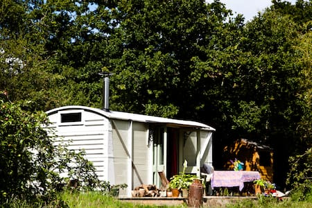 unique and fun glamping near bruton - North Brewham - รถไฟ