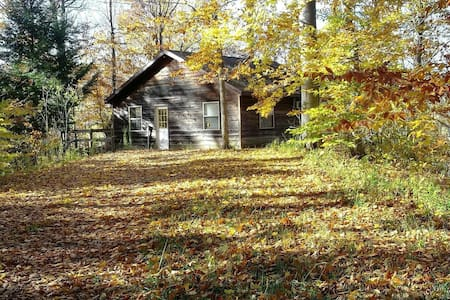 Sanitized Riverview Cabin on 150 Acres of Nature
