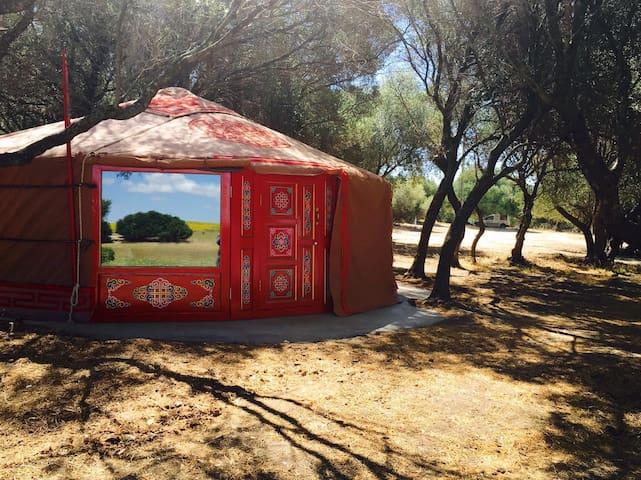 Wakana Lake, yurta. Benalup. Cádiz.