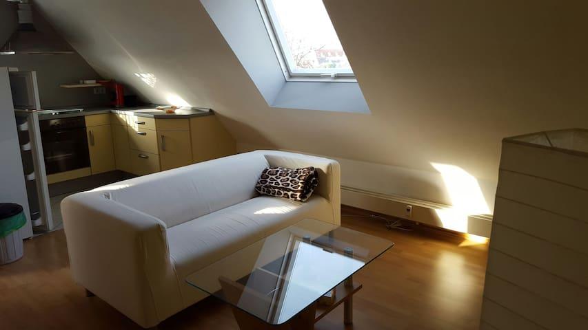 Gemütliche Dachgeschoss Wohnung! - Rüsselsheim