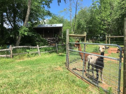 Cabin with outhouse on alpaca farm