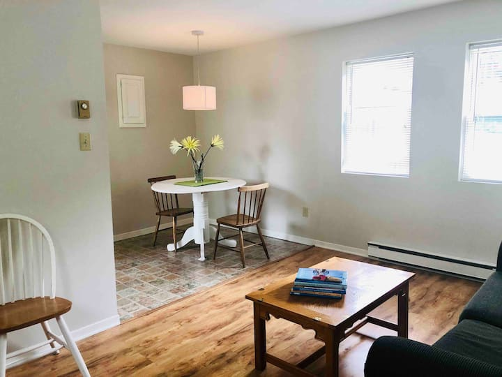 Cosy, Furnished apartment in Downtown Antigonish!