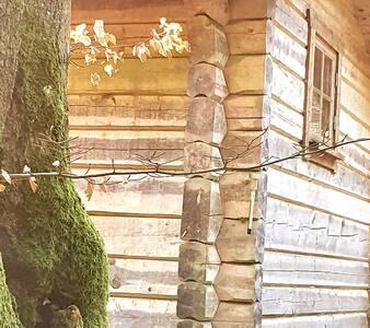 Glaentan croft forest nature quiet recreation