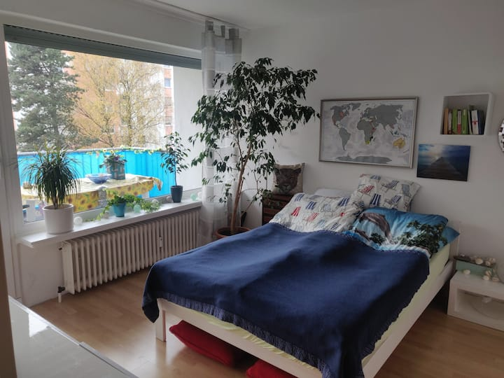 comfortable and lightflooded apartment