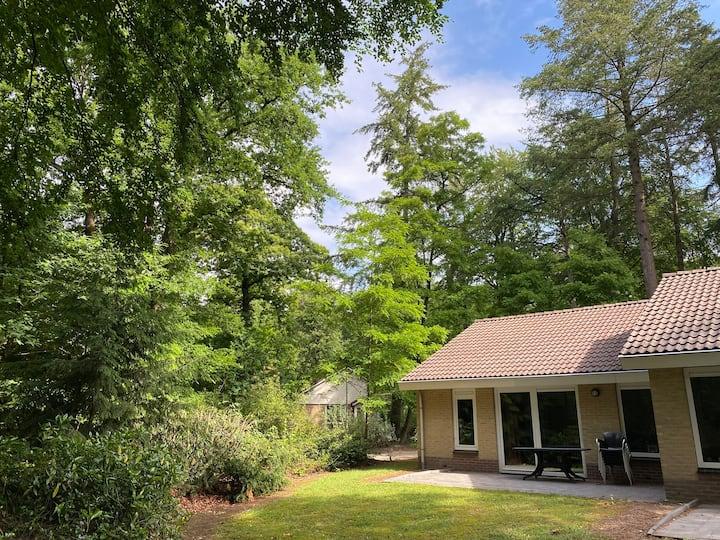Geschakelde bungalow op rustig Bospark (C22)