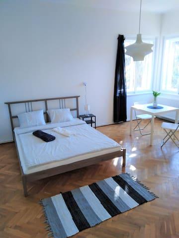 Spacious private room close to city center
