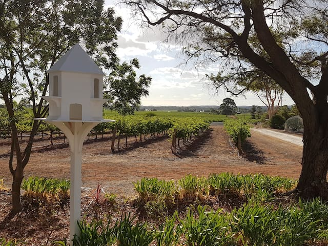 Barossa Valley Guest Cottage, 'In The Vines'