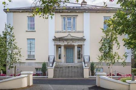 Entire Apartment in South Dublin