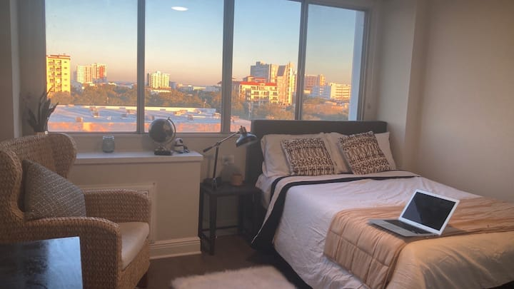 Spacious Downtown St. Pete 1BR Apt *Stunning View*