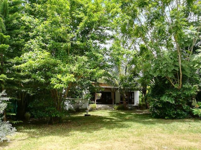 Bel Air retreat in a lush garden