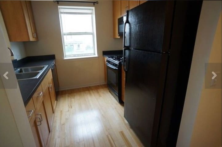 Condo near UIC, Downtown and Convention center