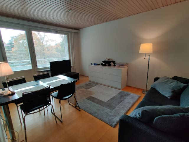 Highly functional apartment for your Helsinki base