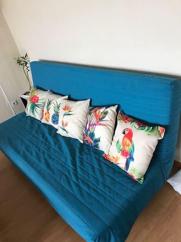 Canapé convertible confortable ! - 69100 - Appartement