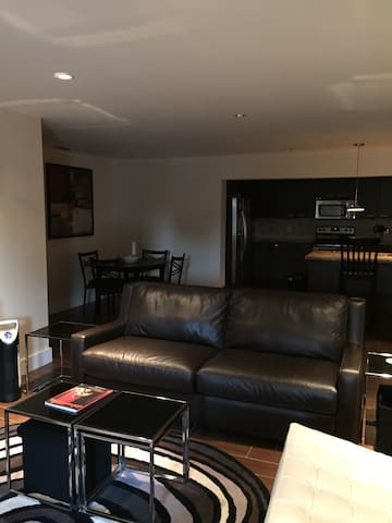Pullout Big Comfy Couch! 60 inch TV - Fort Lauderdale - Rumah