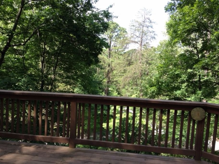 view from Treehouse deck.