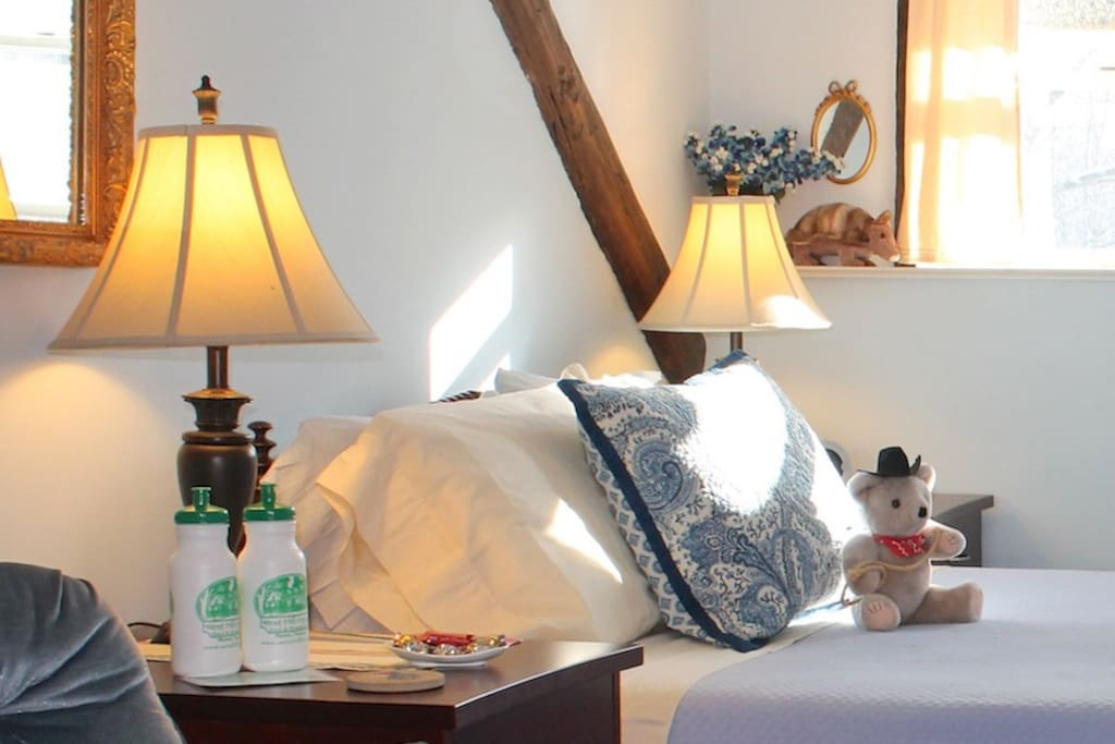 The Bluebonnet Room Bed