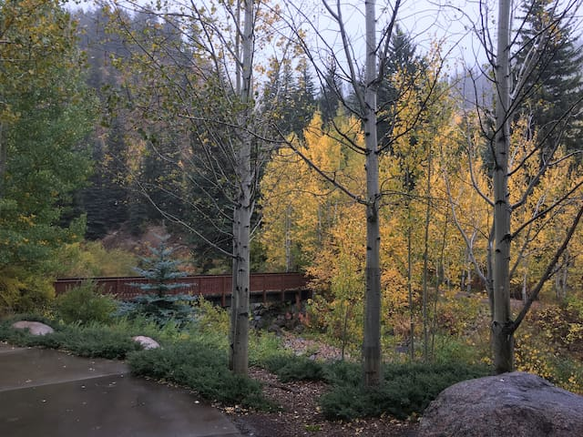 Vail 2BR/2BA Condo along banks of Gore Creek
