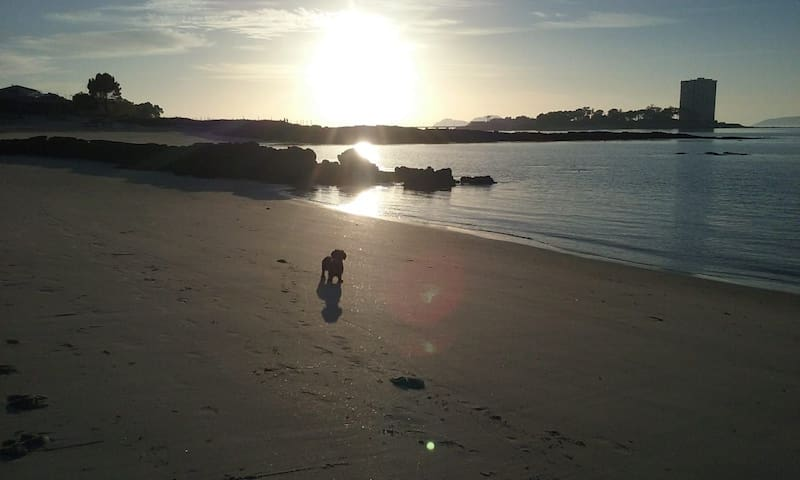 CASA MAGDA: En las playas de Vigo