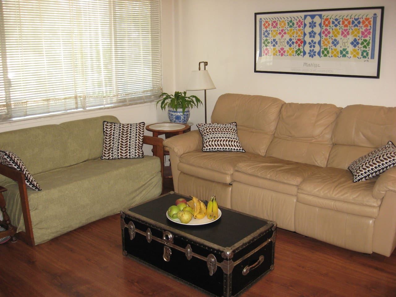 The living room. The small couch folds out to a double bed.