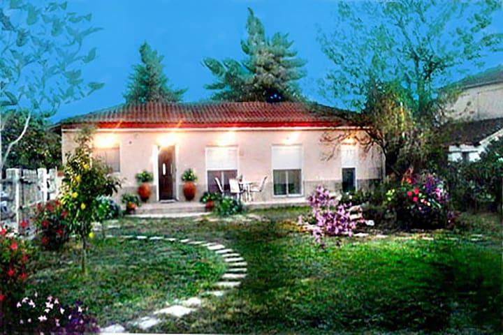 Anastasia Gardens Villa - Nea Mesagkala - Vila