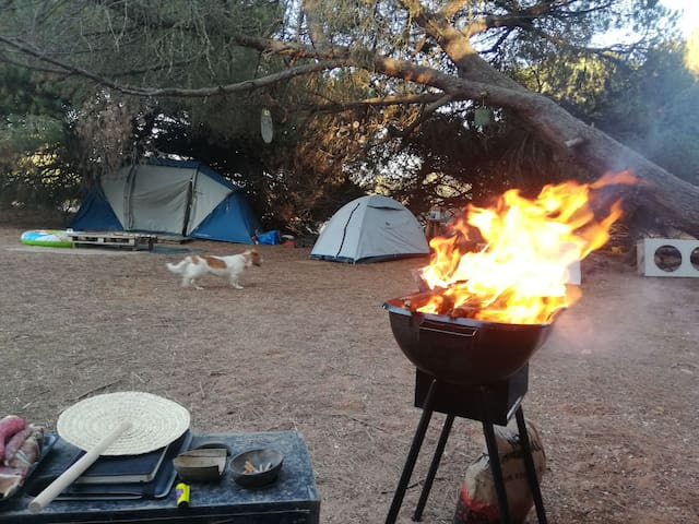 Free Spirit Beach Camping (tent 2 persons)