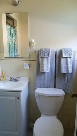 Super clean bathroom with lush cotton towels