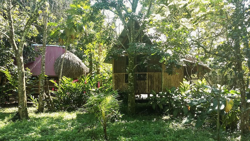 Rustic double cabin in Palenque - Casa Bambutan - Palenque - Bed & Breakfast