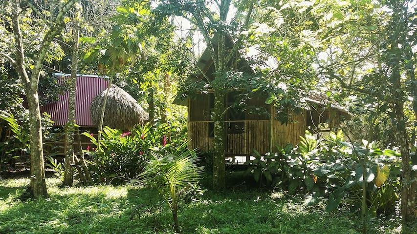 Rustic double cabin in Palenque - Casa Bambutan - Palenque