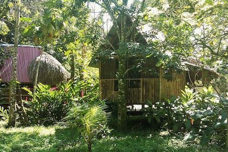Cabaña rústica doble en Palenque - Casa Bambutan - Palenque - Hostel