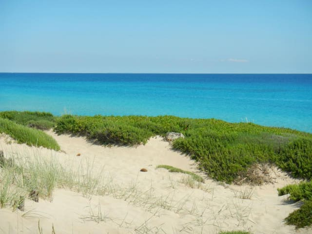 Salento, Beach Flat in front wonderful dunes - Campomarino - Villa