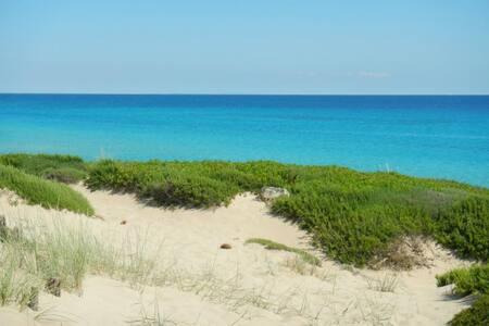 Le meravigliose dune di Campomarino - Campomarino