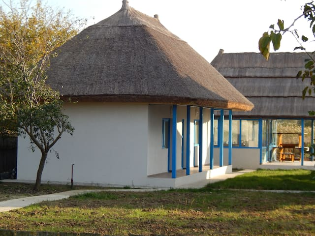 Stuffino Crisan House