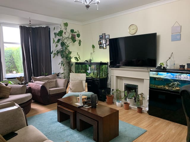 Large Double bedroom close to city