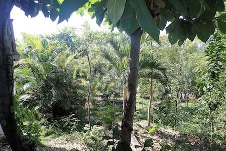 Poze Guest House - Bougalou - Cayes-de-Jacmel - Domek parterowy
