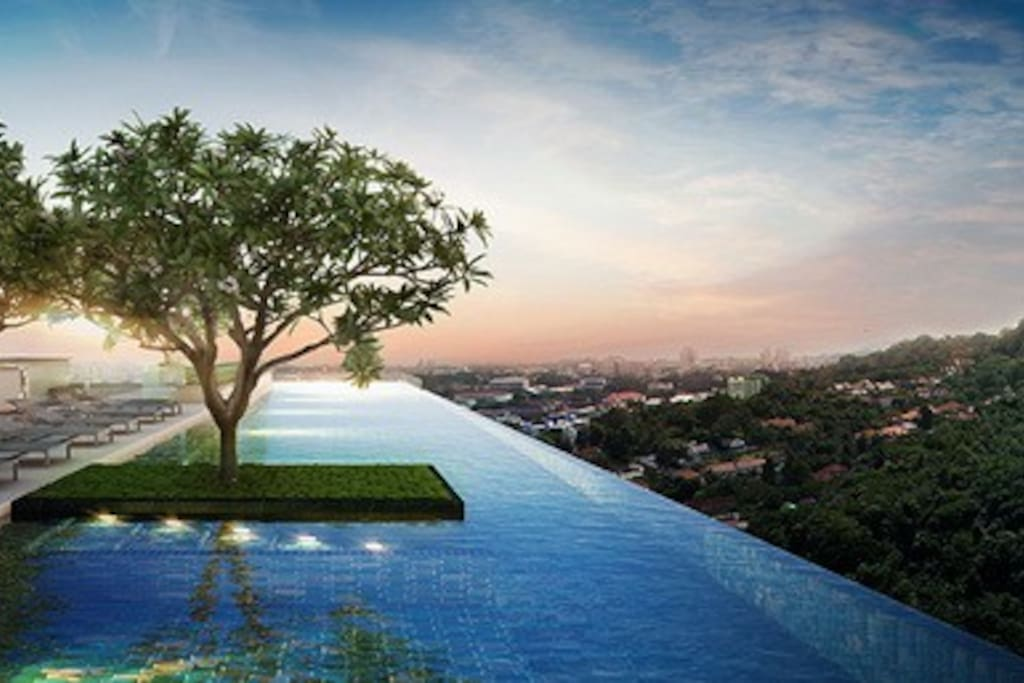 Rooftop view and swimming pool.