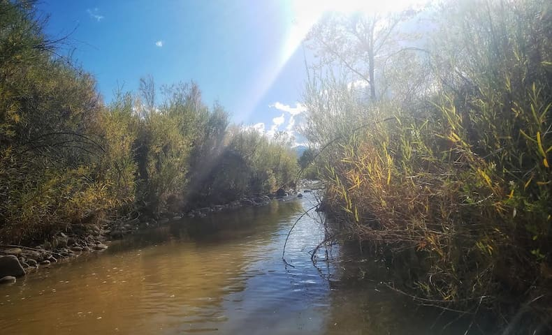 "El Rito creek (""Little River"") which runs along the edge of our property. Guests are welcome to explore it!"