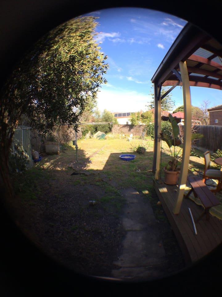 Huge backyard - undercover deck & grass area