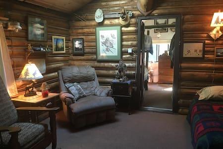 Cozy, quiet, serene, relaxing Adirondack cabin