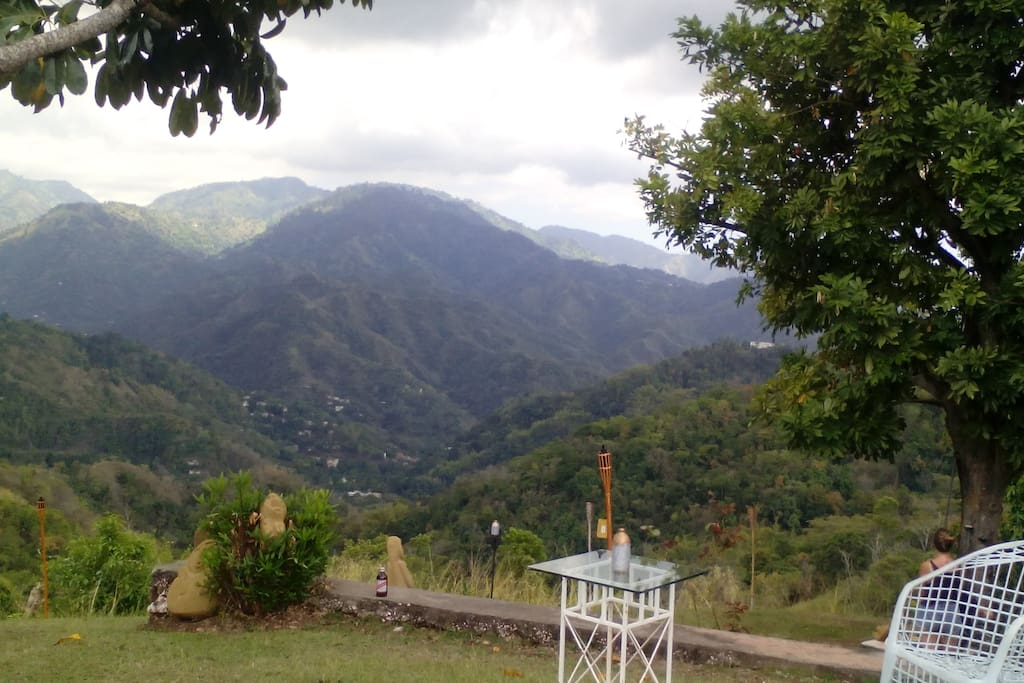 Hill Top Bed And Breakfast Kingston Jamaica