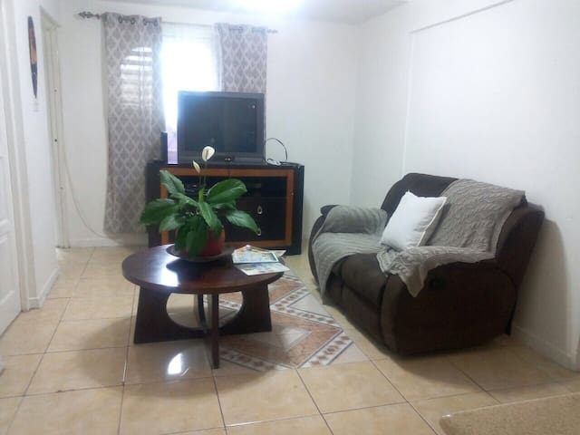Private Gated New Kingston Vacation Apartment Home - Kingston - Departamento